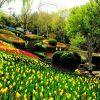 Công viên Eworld – Địa điểm giải trí hấp dẫn hàng đầu tại Daegu
