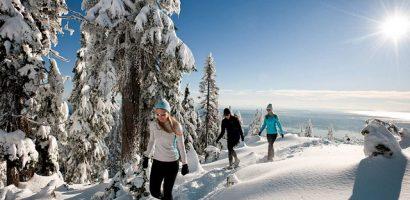 Núi Grouse – Điểm du lịch được yêu thích nhất tại Vancouver