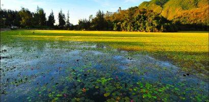 Các điểm du lịch hút khách nhất ở Côn Đảo ngày Tết