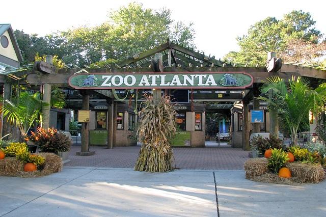 Vườn thú Atlanta – Thiên đường của các loài động vật hoang dã