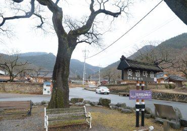 Thăm làng Otgol lịch sử ở Daegu