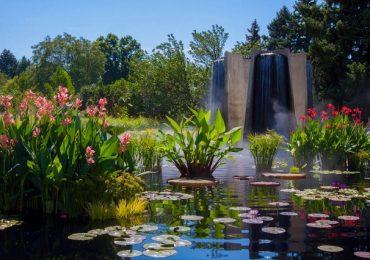 Tham quan Vườn Bách thảo Denver