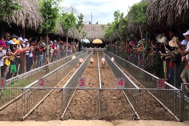 Mách nước 2 địa điểm vui chơi dịp Tết hot nhất ở Cần Thơ
